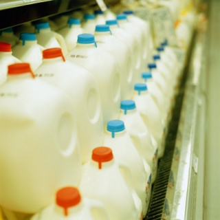 Jugs Of Milk In Grocery Store
